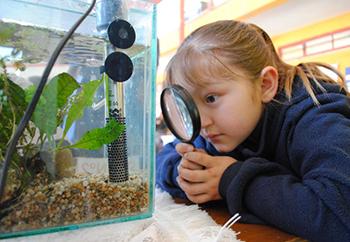 Los padres deben motivar a los niños en el estudio de la ciencia desde pequeños.